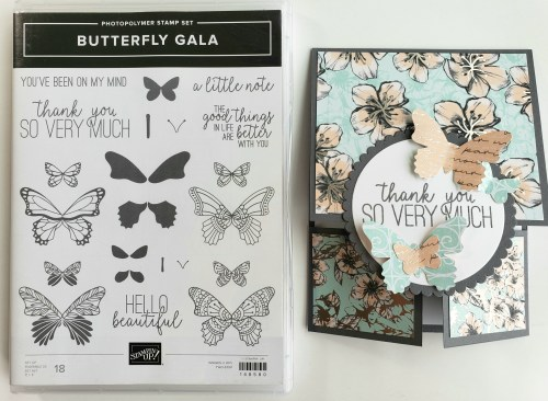 Double Dutch Door fun fold card idea using the Stampin Up Butterfly Gala stamp set includes video tutorial