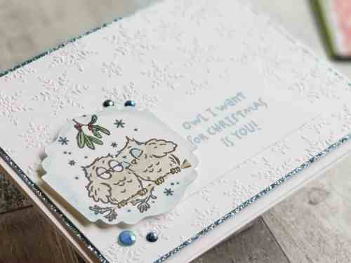 The Stampin Up Have A Hoot stamp set, is full of adorable Halloween and Christmas owl stamps!