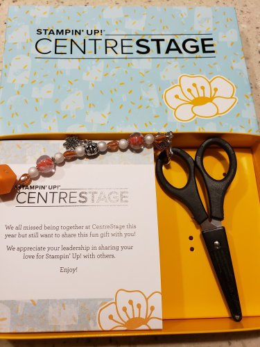 OnStage@Home was such a fun time!! Take a look at some new product sneak peeks, projects, and prizes!