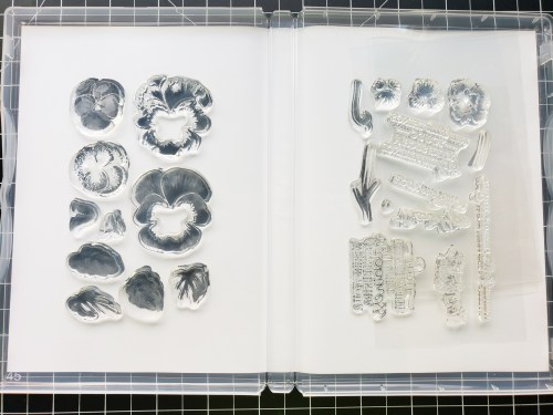 Stampin Up has repackaged our photopolymer stamps and you're going to want to know what to expect! Read more here!