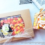 Click to see this adorable Halloween chicken treat & candy corn treat holder. Share them and make someone smile today!