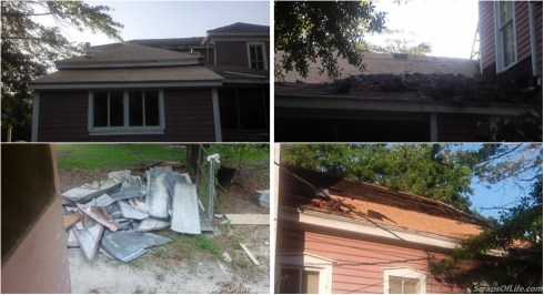 Bye-bye old shingles and tin! (Todd was nice enough to go snap pictures of each day's progress, this was just Day 1)