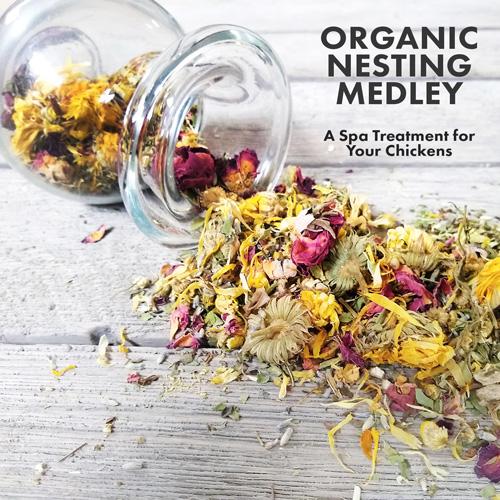 Organic-Nesting-Medley-scratch-peck-feeds