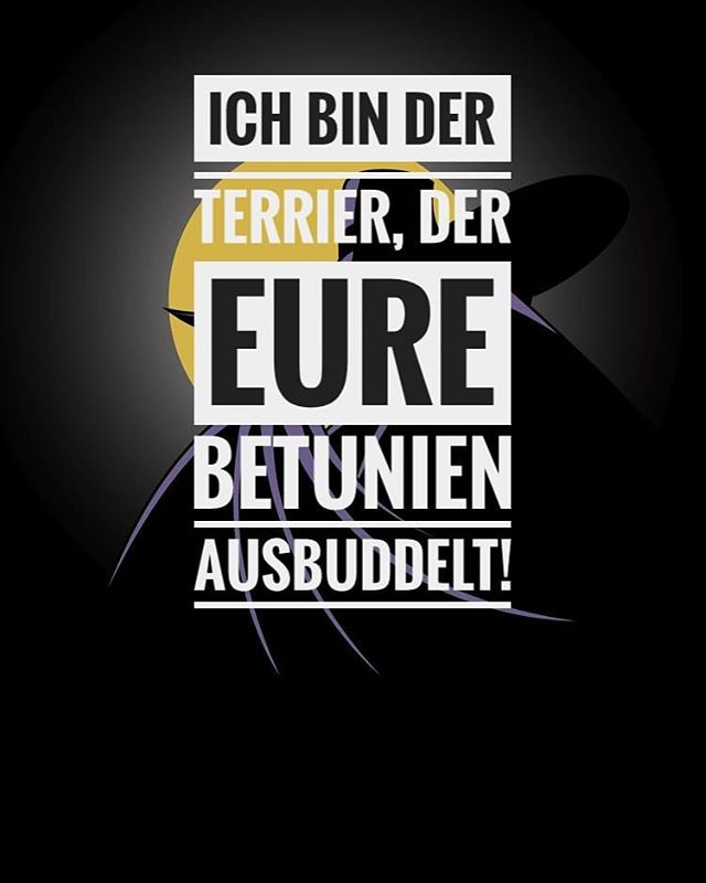 #darkwingduck #disney #spruch #quote #sprüche