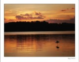 Golden sunset across the lake in North Woods Wisconsin