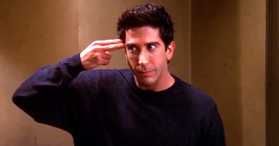 David Schwimmer as Ross Gellar