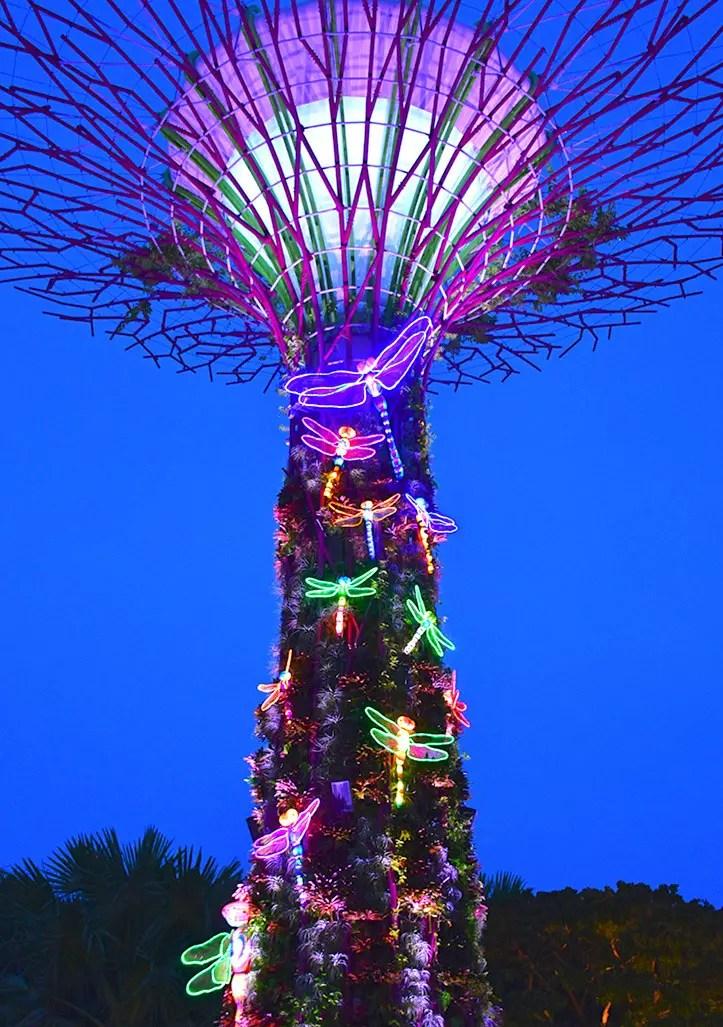 Supertree Grove Illumination
