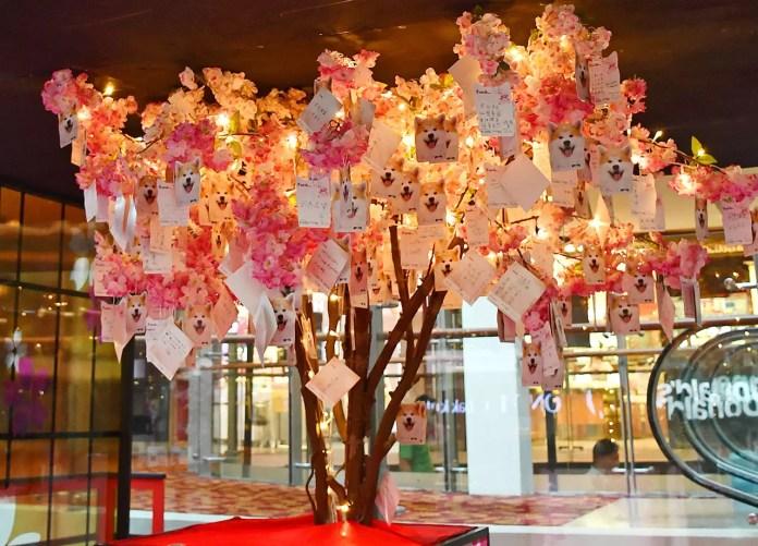 Chinatown Wishing Tree 2018