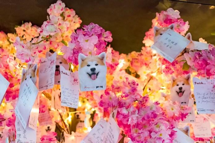 Chinatown Wishing Tree 2018 Wishing Cards