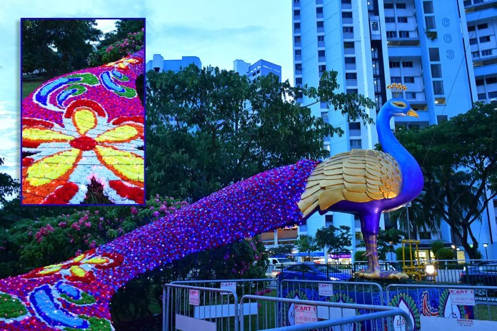 Peacock at Little India Festive Light-Up 2018