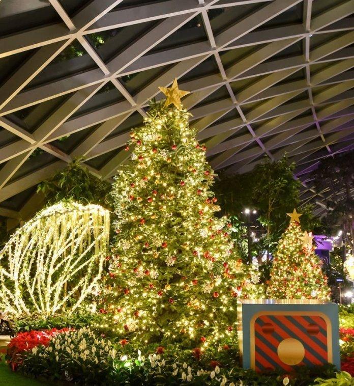 Canopy Park Christmas 2020
