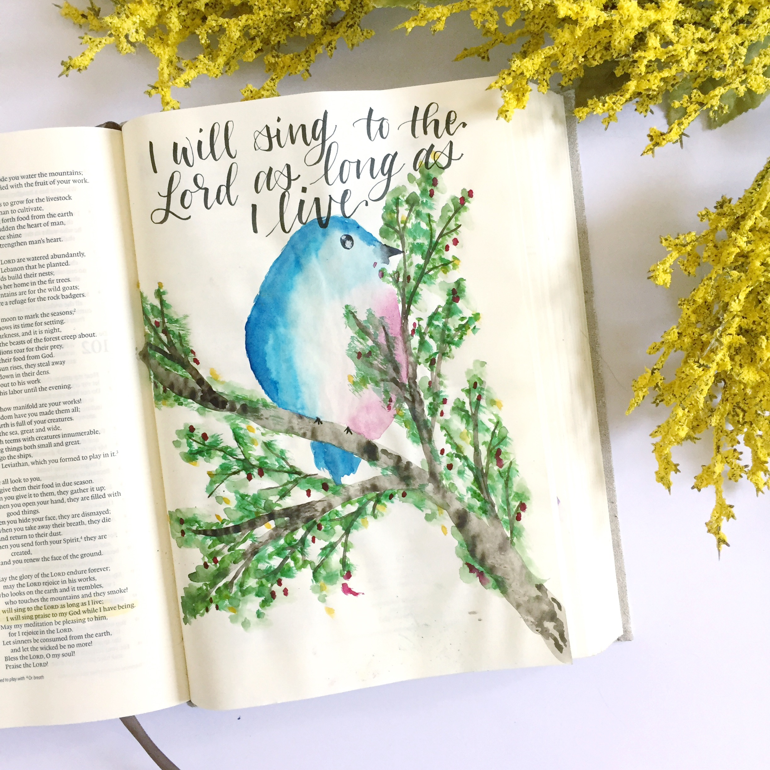 Watercolor Bird Tutorial- Bible Journaling With Me- Plus A