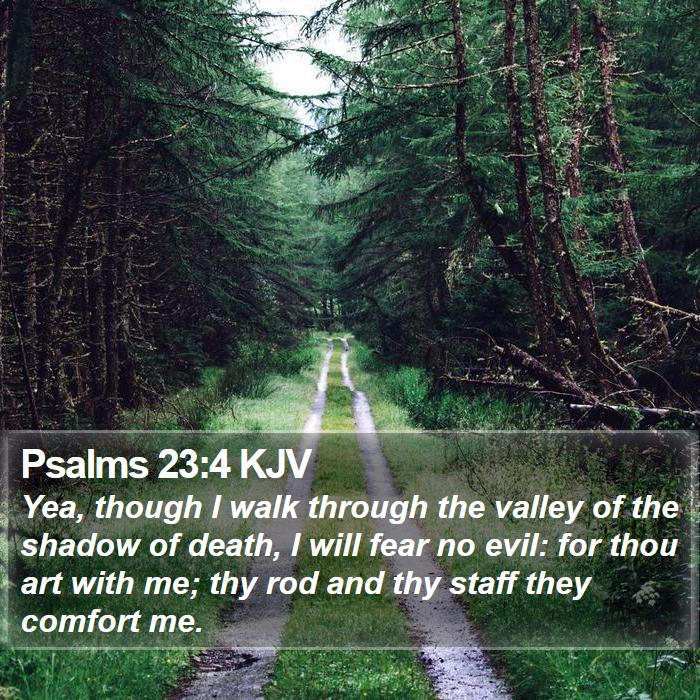 Psalms 23:4 KJV - Yea, though I walk through the valley of the