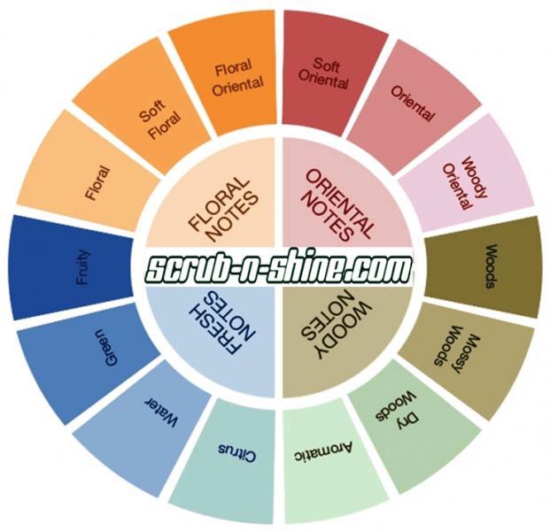 Scrub n Shine Fragrance Wheel