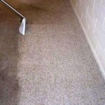 Scrub-n-Shine Guide to Carpet Spot and Stain Removal