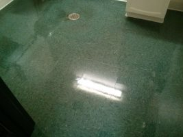VCT Vinyl Floor Coatings MN