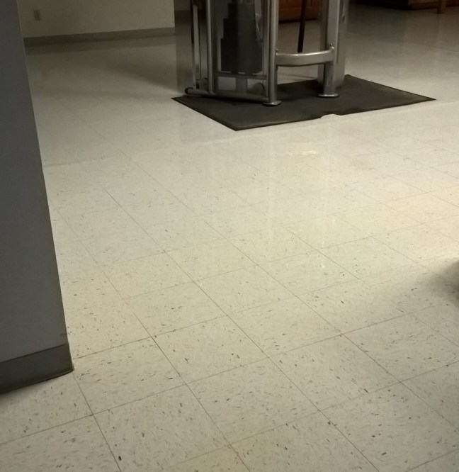 Deeply Embedded Rust and Soils on VCT Floor in St Paul