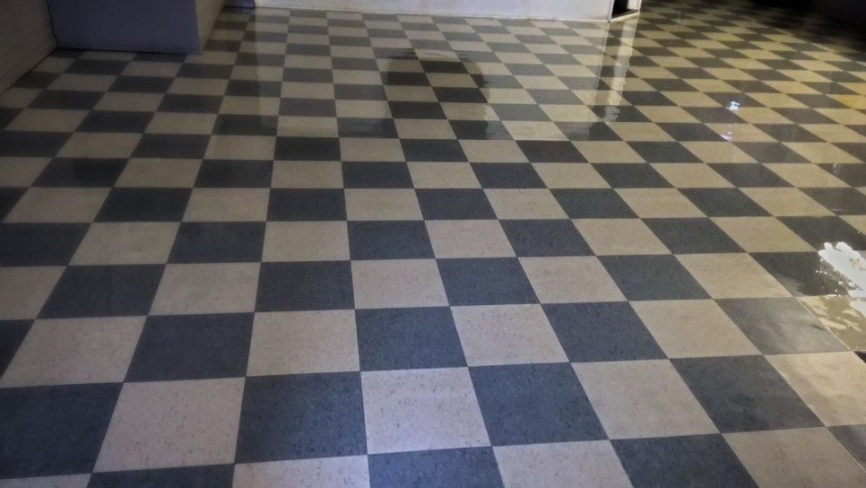 Crystal Hard Floor Care