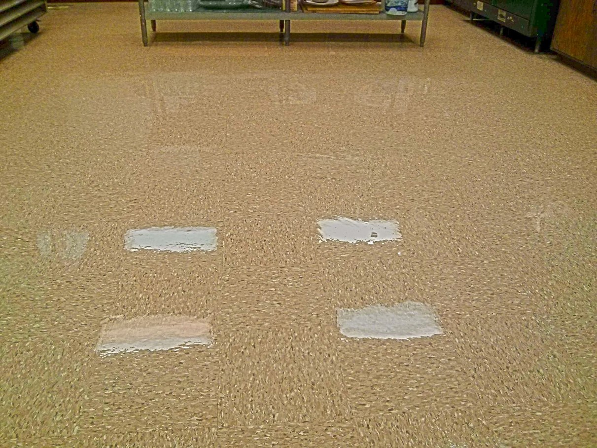 Floor Clear Coating Services Hennepin County