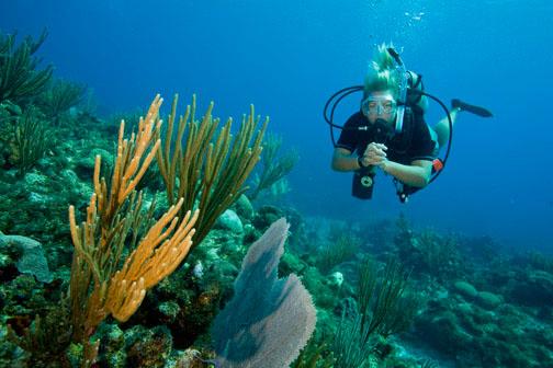 PADI Open Water abroad