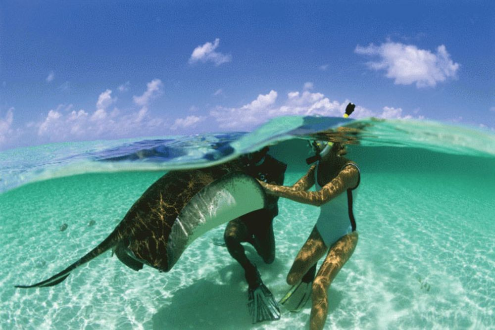 turks and caicos dive