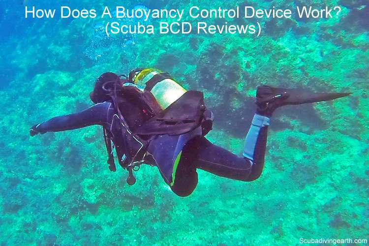 How Does A Buoyancy Control Device Work - Scuba BCD Reviews