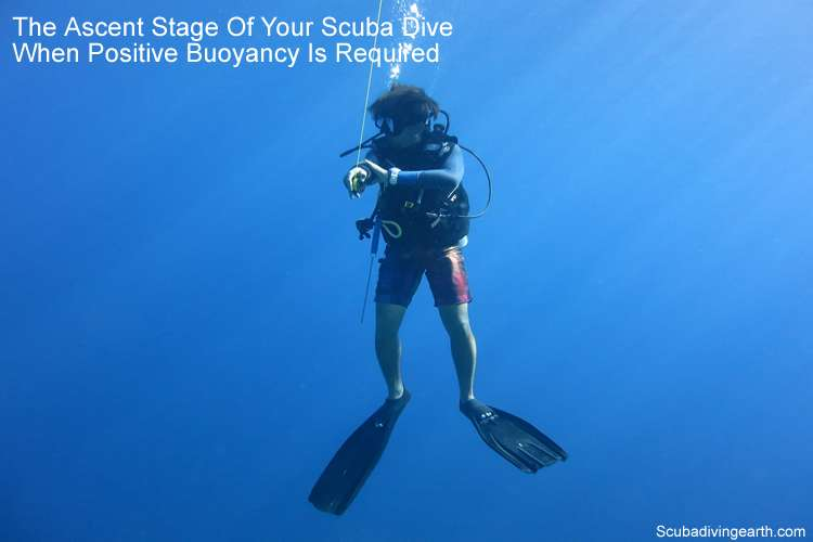 The ascent stage of your scuba dive - when positive buoyancy is required