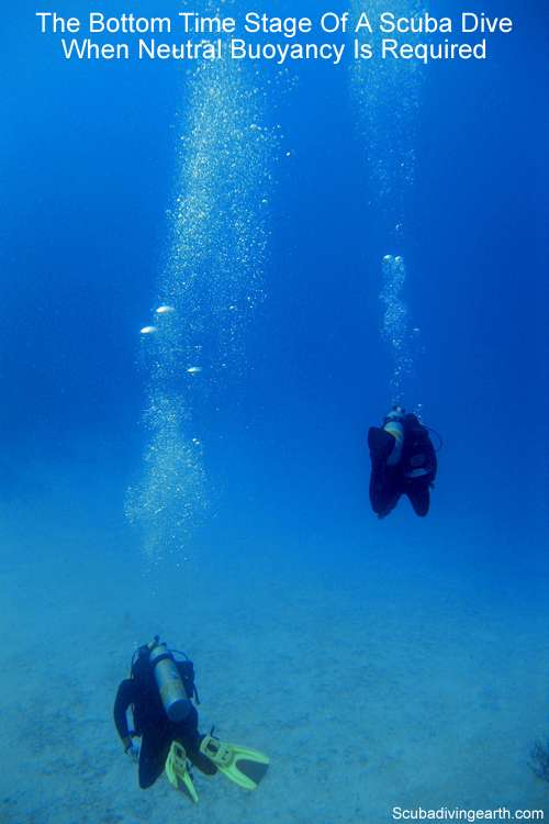 The bottom time stage of a scuba dive - when neutral buoyancy is required