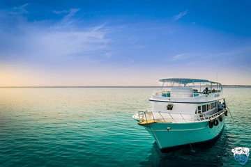 Book a 4 day liveaboard Red Sea Egypt (Red Sea dive liveaboard reviews)