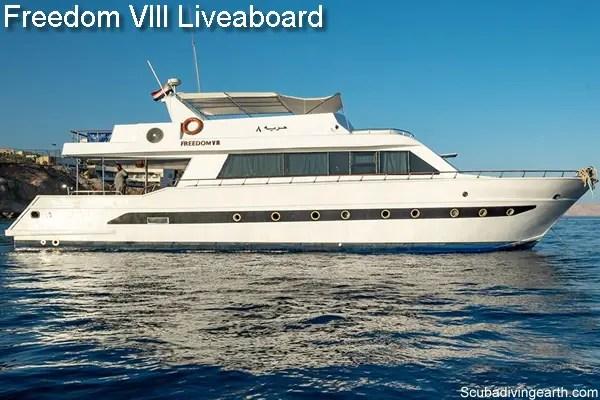 Freedom VIII Liveaboard 4 day liveaboard