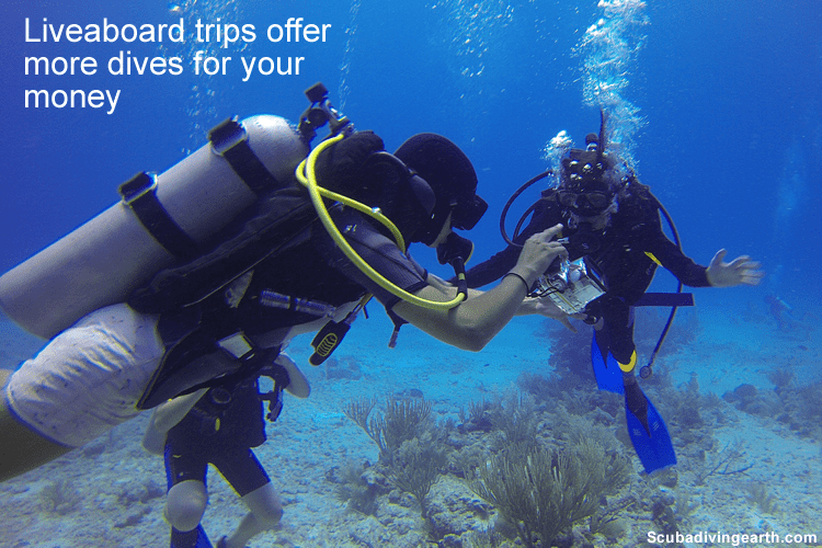 Liveaboard diving holidays offer more dives for your money