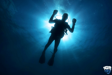 What to do in case of dive buddy seperation