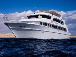 Red Sea Whirlwind Liveaboard