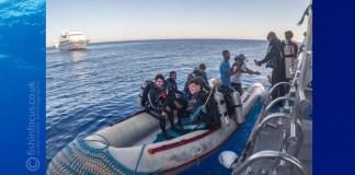 Hurricane, Shark Quest Photography, Scuba Travel