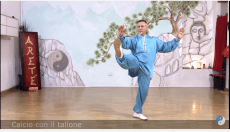 Video Forma 24 Tai Chi Online