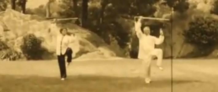 Video: Forma 32 di spada eseguita in coppia