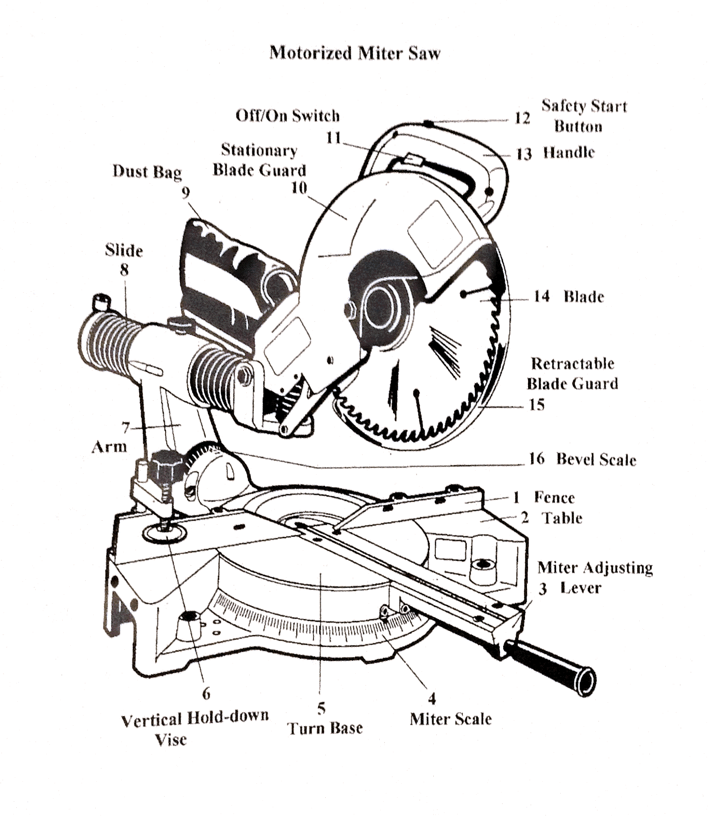 Circular Saw Motor Wiring Diagram