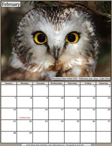 Free 2016 Bird Calendar - South Dakota Birds and Birding