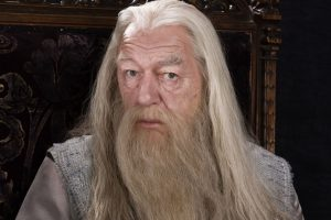 Dumbledore - Harry Potter