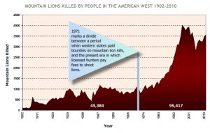 Mountain Lions Killed - American West