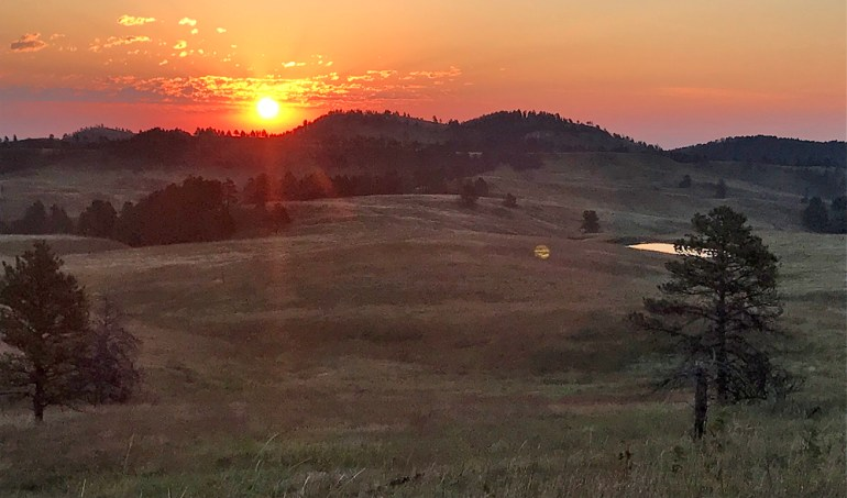 Custer State Park - Dawn