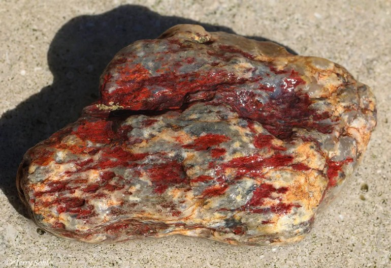 Agate/Jasper - Buffalo Gap National Grasslands
