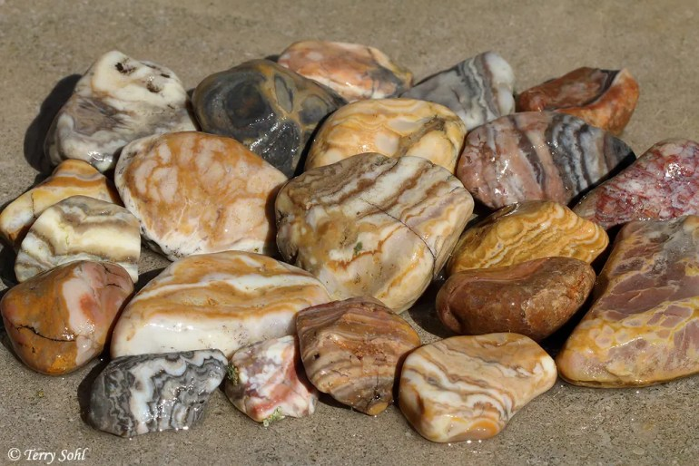 Prairie Agates - South Dakota