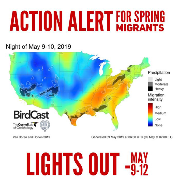 "Houston Audubon ""Lights Out"" for May 9-12"