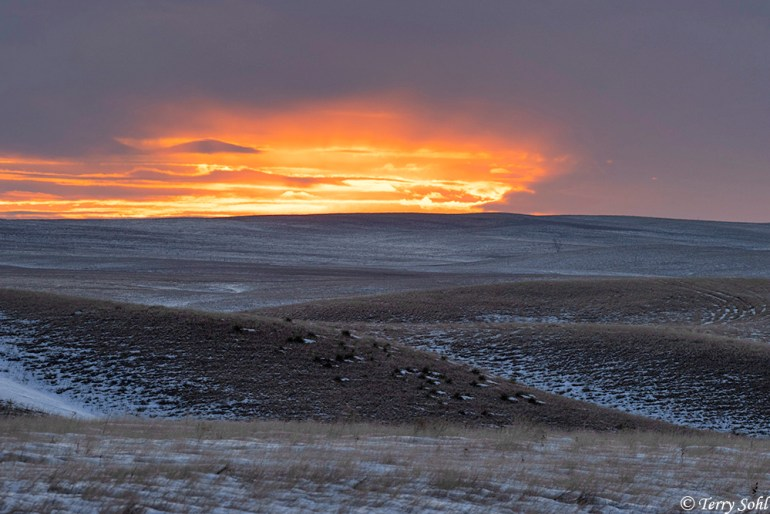 Fort Pierre National Grasslands - Sunrise