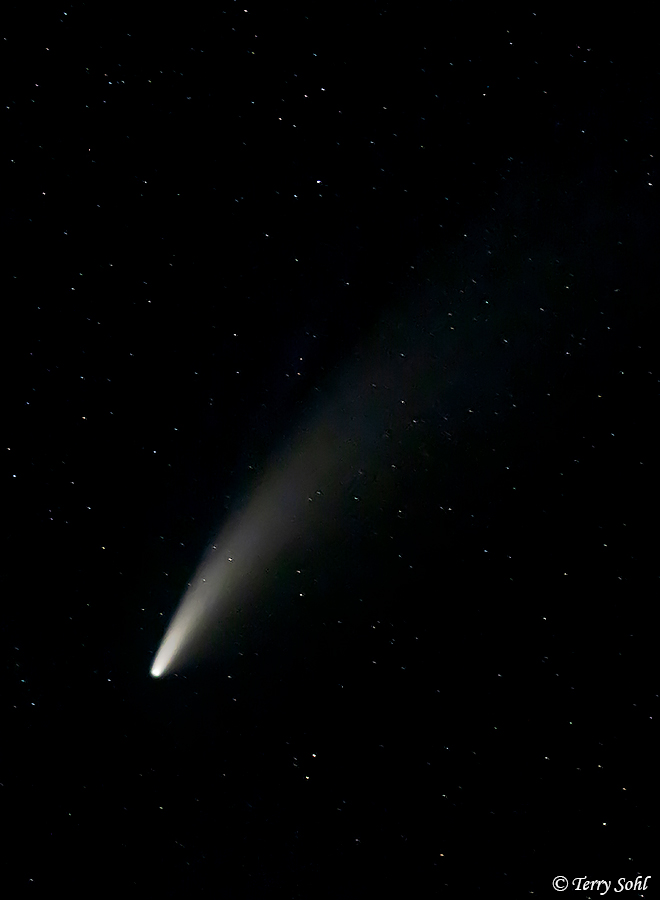 Comet Neowise - by Terry Sohl