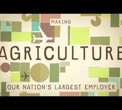 Food For Thought: What Do America's Farmers Grow?