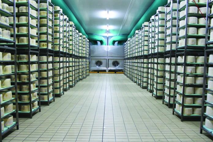 Il gorgonzola traina l'economia novarese