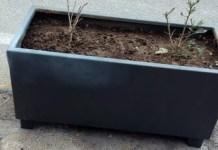 Fiori danneggiati da atto vandalico a Romagnano