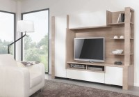 Image Gallery of Tv Cabinets And Bookcase (View 20 of 20 ...